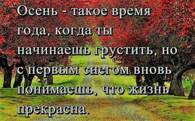 Цитаты про осень фото
