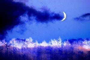 Цитаты про ночь красивые и короткие || Что нибудь на ночь