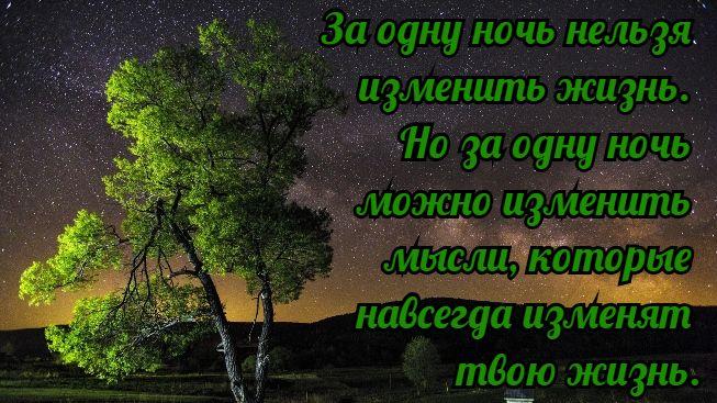 Цитаты про ночь смешные