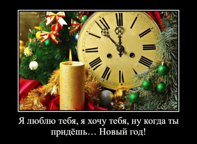 Картинки про Новый год прикольные