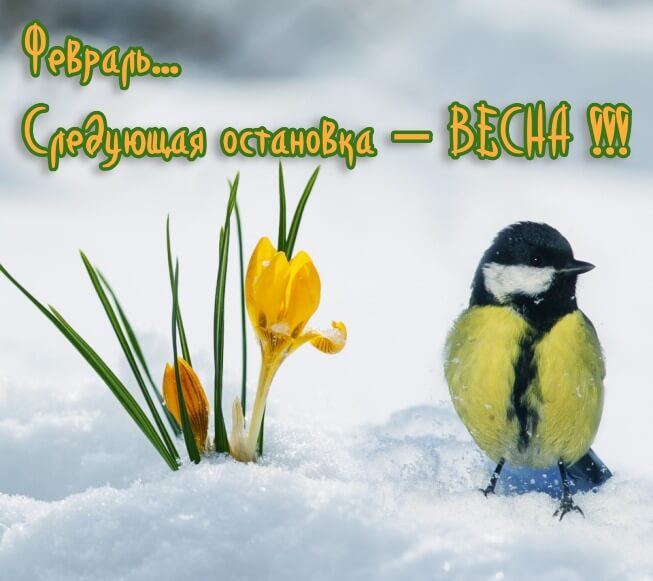 Картинки скоро весна красивые